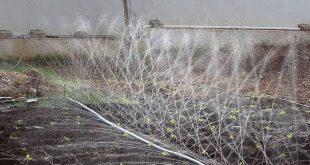 قیمت لوله تاشو پی فلکس برای آبیاری بارانی